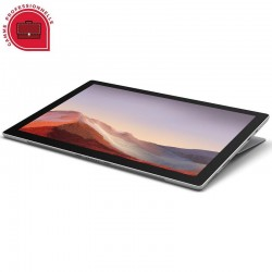 Microsoft Surface Pro 7 for Business - Platine (PVS-00003)